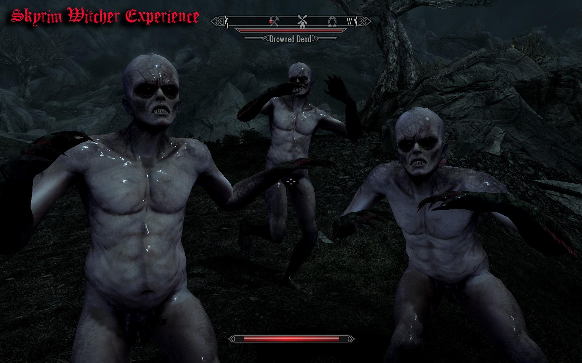 Skyrim Witcher Experience | Погружение в мир Ведьмака