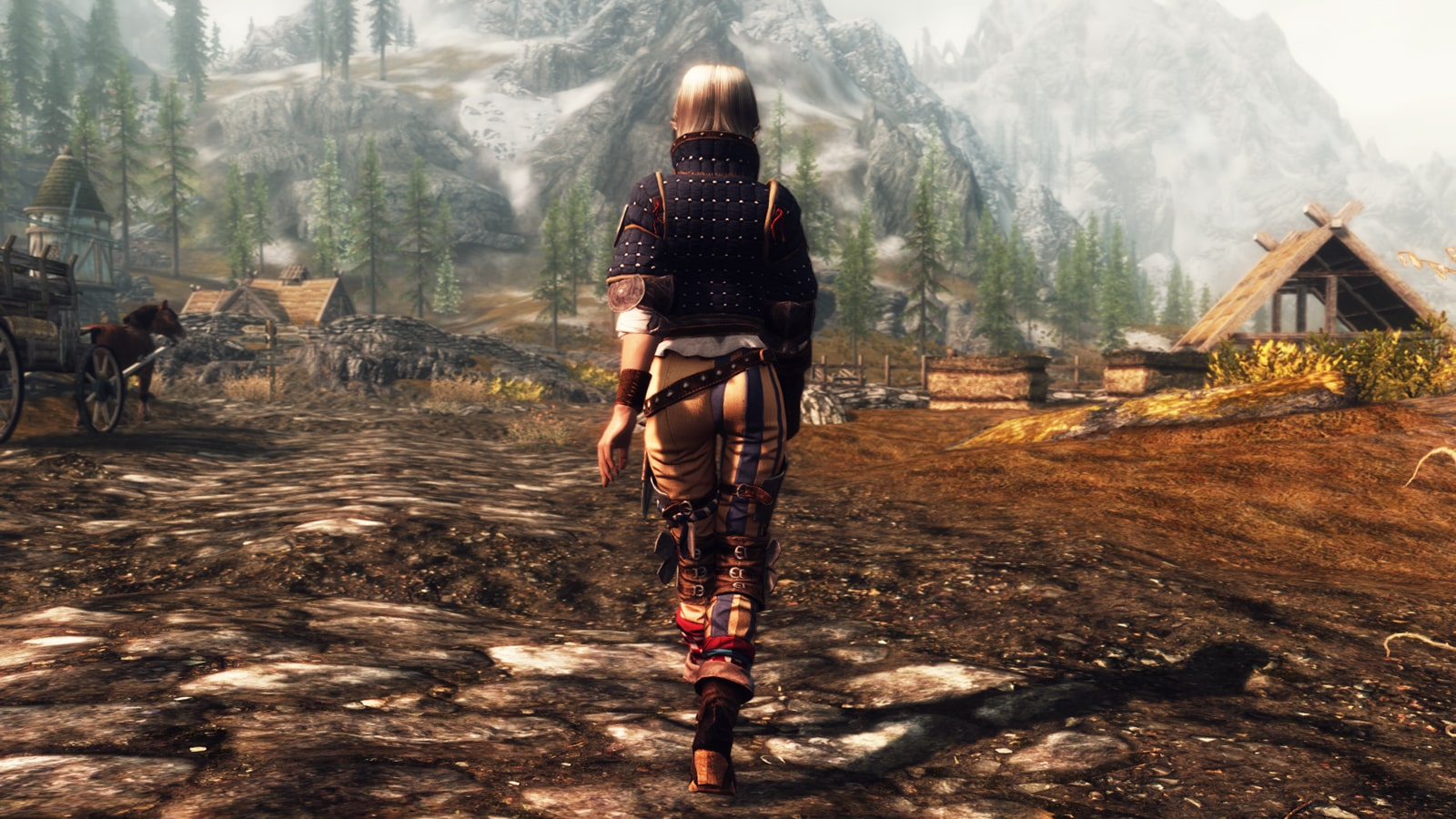 Witcher 2 - Viper Assassin-Blue Stripes-Roche-Ves | Броня из Ведьмака 2