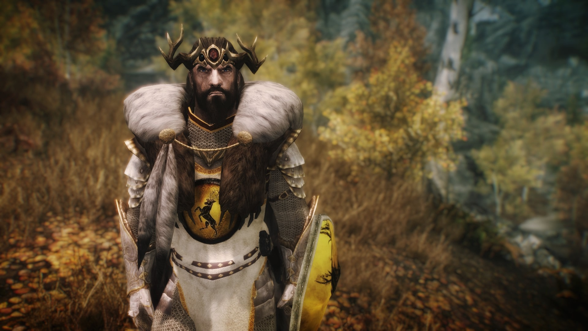 броня арьи старк игра престолов скайрим