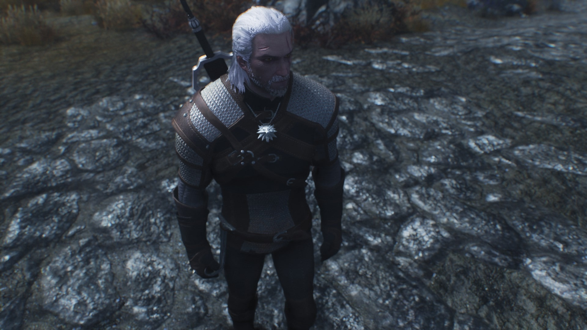 Witcher 3 Geralt of Rivia Skyrim Mod | Геральт из Ривии в Скайриме
