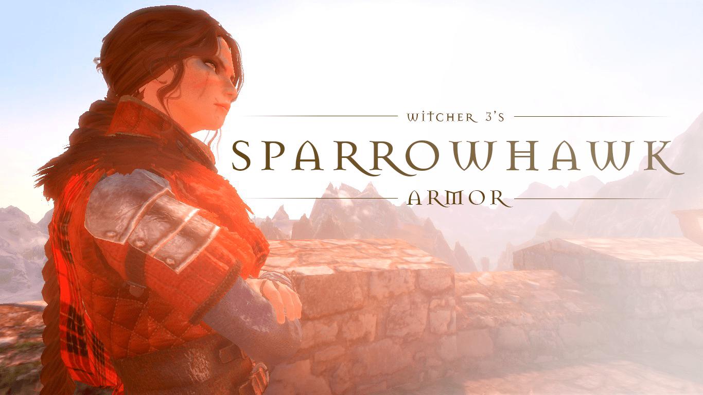 Sparrowhawk Armor | Броня Перепёлки (The Witcher 3)